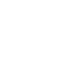 Park & Clean Siena - Zero Emission